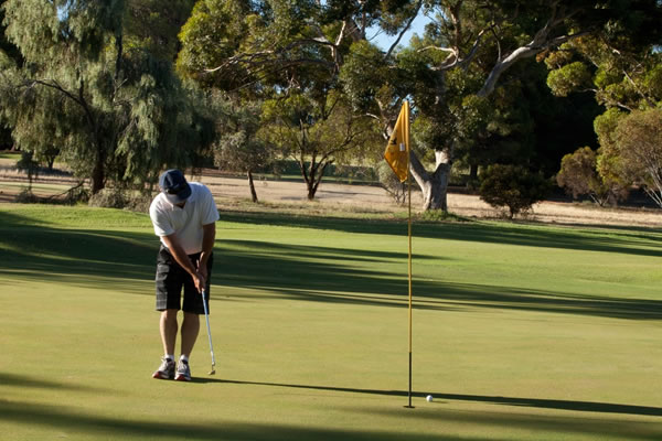 loxton golf course